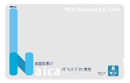 記名式Naica見本画像